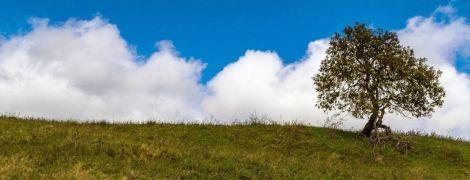 Новая неделя начнется с дождями на Западе и сухой погодой в остальных регионах