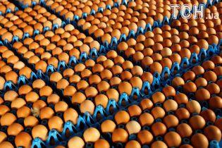 Експерти назвали причини, чому в Україні різко здорожчали яйця й курятина