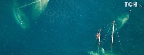 """Разрушительные последствия """"Ирмы"""": Reuters опубликовало фото с высоты птичьего полета"""