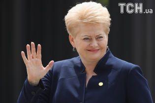 Грібаускайте: РФ чинить в Україні не менш жахливі речі, ніж в Сирії