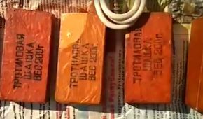 Прикордонники знайшли схрон з боєприпасами російського виробництва у Новотроїцькому