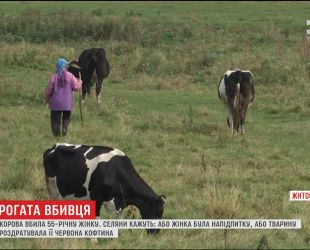 На Житомирщине корова забила рогами до смерти 55-летнюю женщину