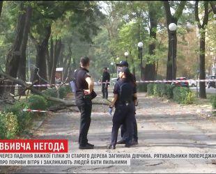 Из-за непогоды в Днепре на студентку упала огромная ветка из старого дерева