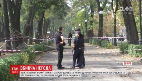 Через негоду в Дніпрі на студентку впала величезна гілка зі старого дерева
