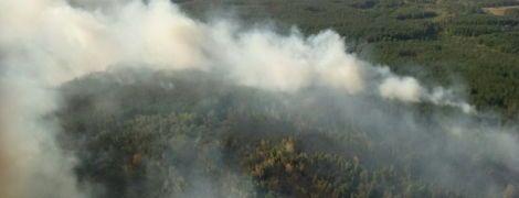 """На Харківщині масштабна пожежа швидко """"поглинає"""" ліс, наближаючись до населених пунктів"""