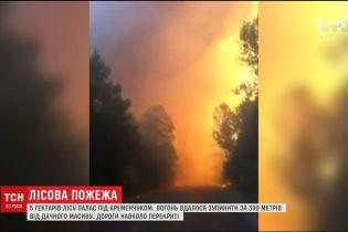 Через лісову пожежу під Кременчуком рятувальники евакуюють місцевих жителів