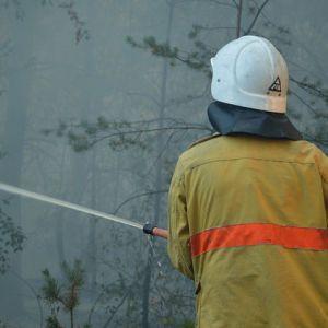 Рятувальники попередили українців про найвищий рівень пожежної небезпеки