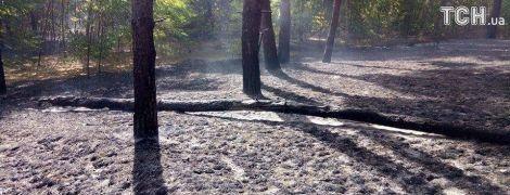 Масштабный пожар на Харьковщине: угрозы населенным пунктам нет