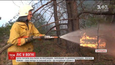 У кількох областях України вже добу боряться з масштабними лісовими пожежами