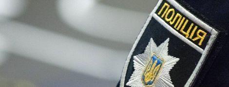 Один из организаторов титушек Саркисян задержан во Франции, - Геращенко - Цензор.НЕТ 2232