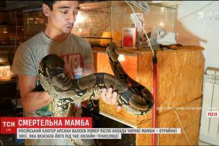 Російський блогер помер після смертельного укусу змії у прямому ефірі
