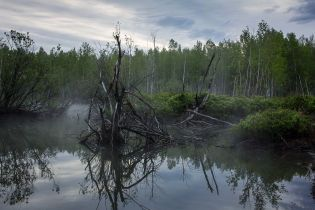 Містичні місця України: бездонне Чорне озеро ніколи не замерзає та приваблює нечисту силу