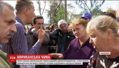 На Львовщине жители села поссорились из-за свиной чумы