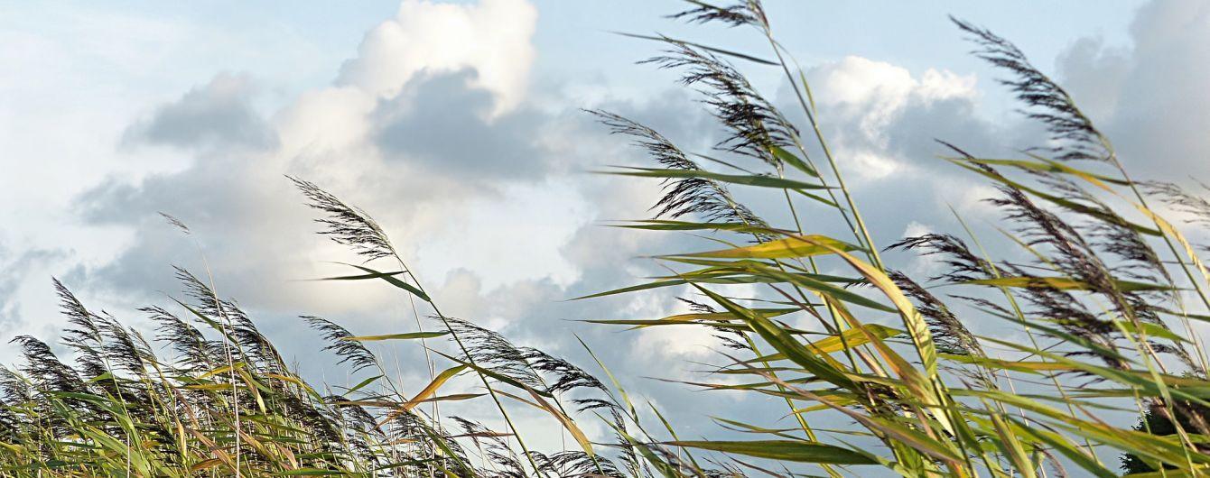 Украинцев предупредили об увеличении скорости ветра