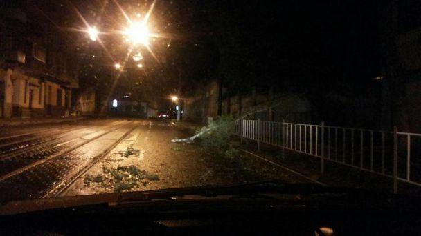 До України присунув потужний буревій: усю ніч валяло дерева та обривало електродроти