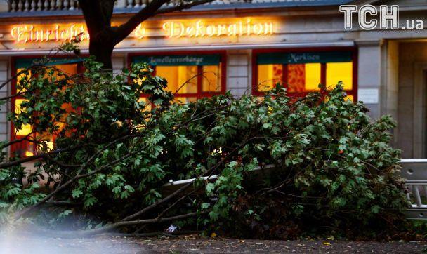 Ураган в Германии унес жизни семерых человек