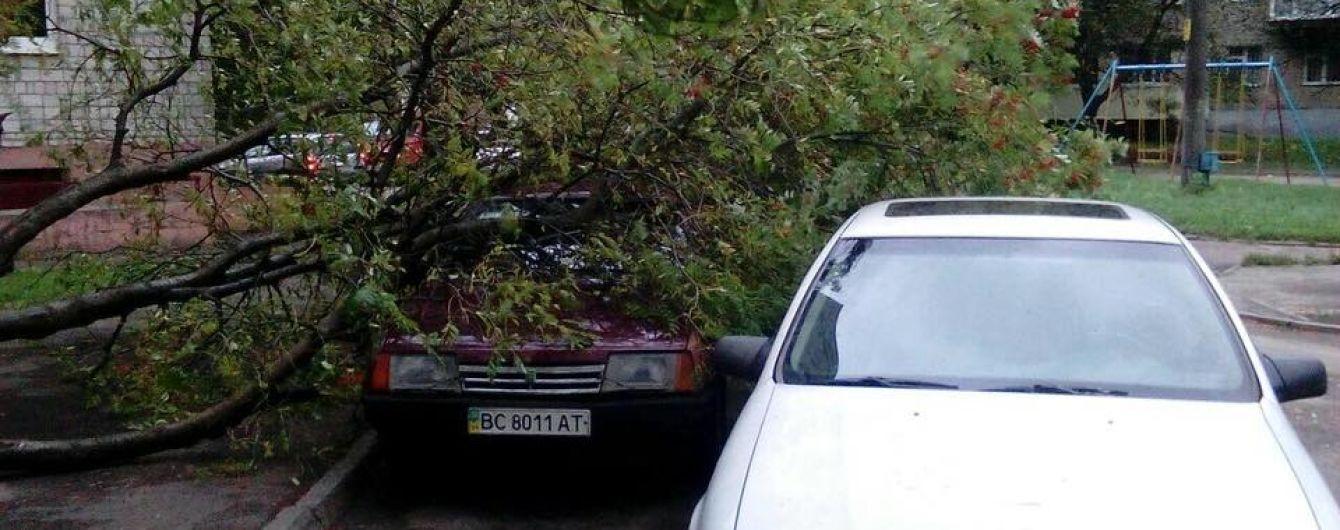 Потрощені автомобілі й обірвані електродроти. Західна Україна оговтується від нещадного буревію