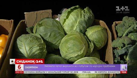Українці активно скуповують капусту