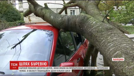 Сотні сіл та містечок по Україні залишаються без світла після потужного буревію