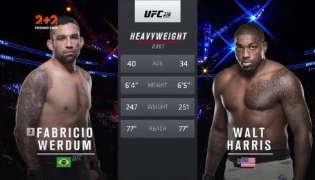 UFC. Фабрисио Вердум - Уолт Харрис. Видео боя