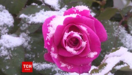 Первый снег выпал в Китае