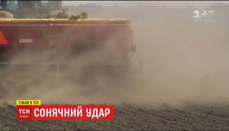 """""""Солнечный удар"""": ТСН выяснила, что произошло с плодородным украинским черноземом"""