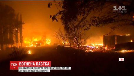 Каліфорнія страждає від жахливих пожеж