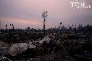 Сожженые винные заводы и 23 погибших: пожарные пытаются остановить огненную стихию в Калифорнии