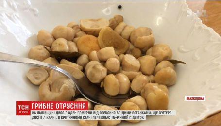 Смертельна вечеря. На Львівщині померла ще одна жінка від отруєння грибами