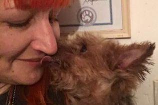 Женщина отказалась от мужчин и вступила в брак со своим псом