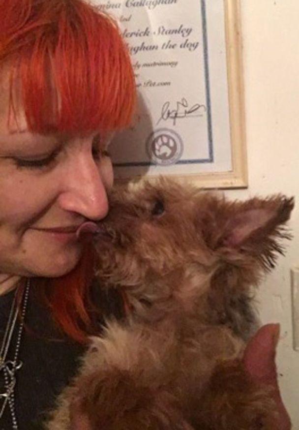 Жінка відмовилася від чоловіків та одружилася зі своїм псом
