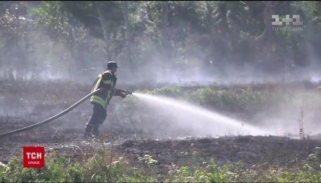 В небольшом селе на Западной Украине придумали, как защититься от лесных пожаров