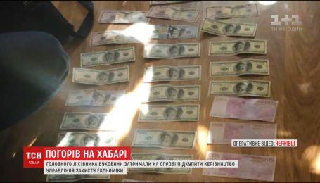 В Черновцах на попытке подкупить высшие чины полиции задержали главного лесовода Буковины