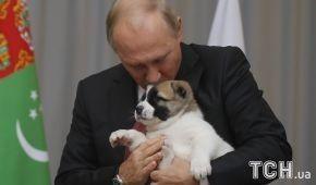 Подарований Путіну песик накивав п'ятами після президентського поцілунку