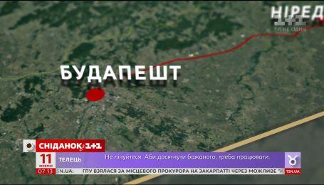 В Україні підскочили ціни на тепличні огірки та помідори