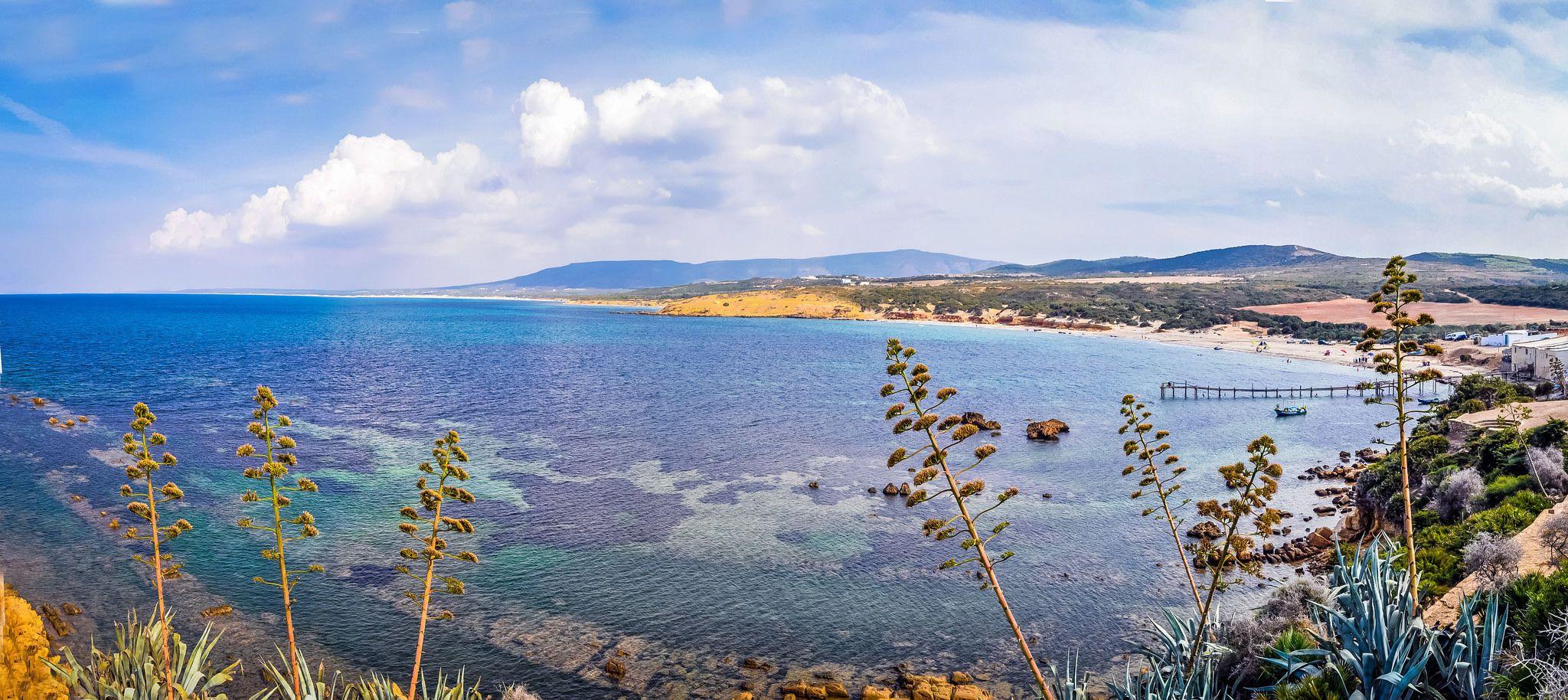 Туніс, Набуль