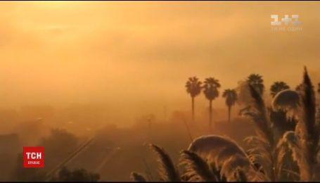 Лісові пожежі продовжують вирувати у Каліфорнії