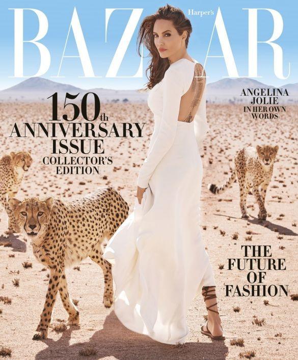 Анджеліна Джолі з гепардами_6