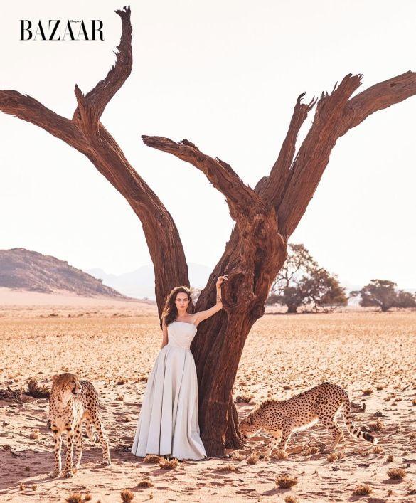 Анджеліна Джолі з гепардами_4