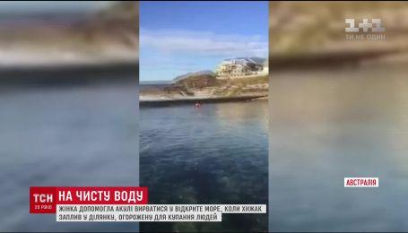 В Австралии женщина собственноручно поймала и выпустила в море метровую акулу