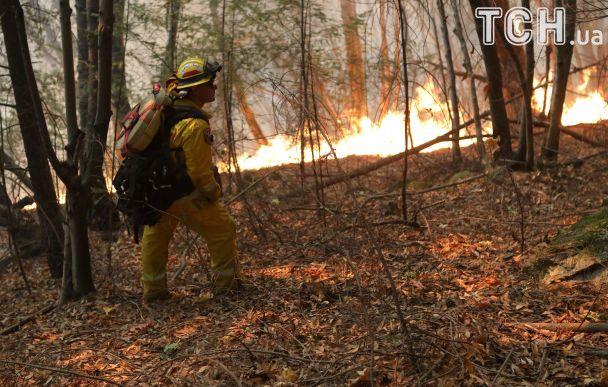 Найбільш смертоносні пожежі в Каліфорнії забрали життя вже 31 людини