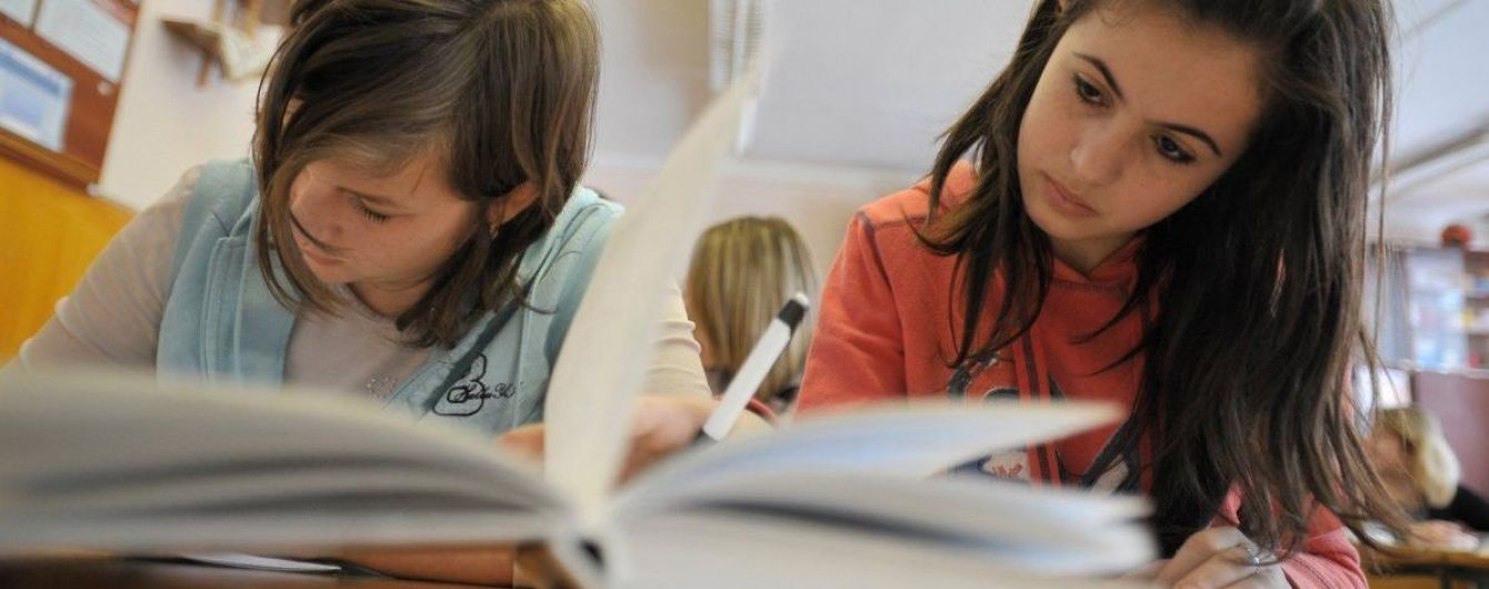 В Венгрии хотят, чтобы венгерские школы в Украине были государственными - нардеп