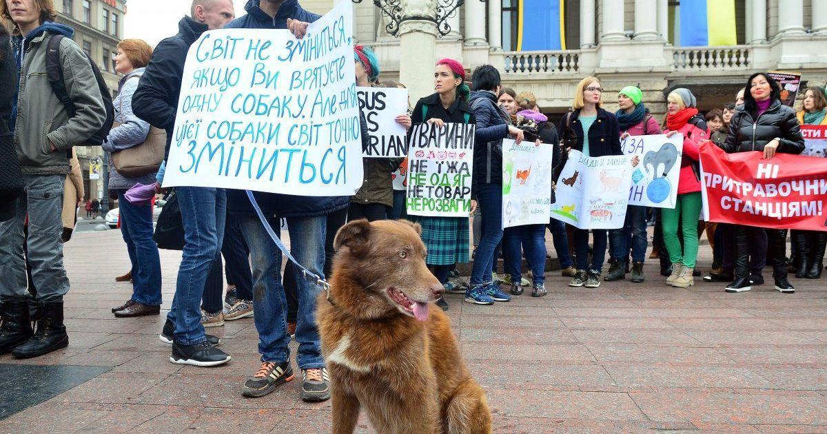 Марш за права тварин у Львові