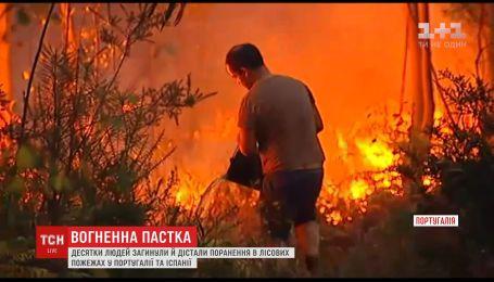 Десятки человек погибли в лесных пожарах в Португалии и Испании