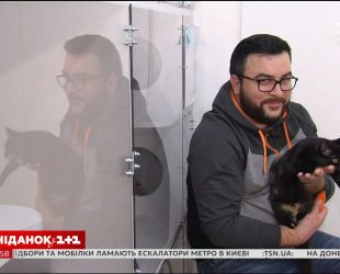 Ведущие Сніданка с 1+1 приняли участие в благотворительной фотосессии с котиками