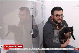 Ведучі Сніданку з 1+1 взяли участь у благодійній фотосесії з котиками