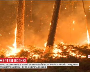 В Іспанії та Португалії зросла кількість жертв від лісових пожеж