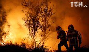 Їдкий дим та суцільні згарища: Португалія не може подолати лісові пожежі