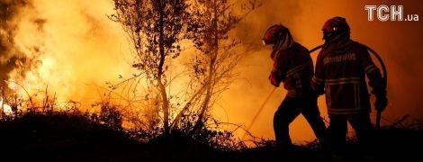 Едкий дым и пепелища: Португалия не может побороть лесные пожары