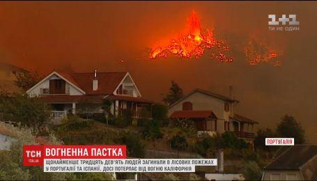 Щонайменше 39 людей загинули у лісових пожежах в Португалії та Іспанії